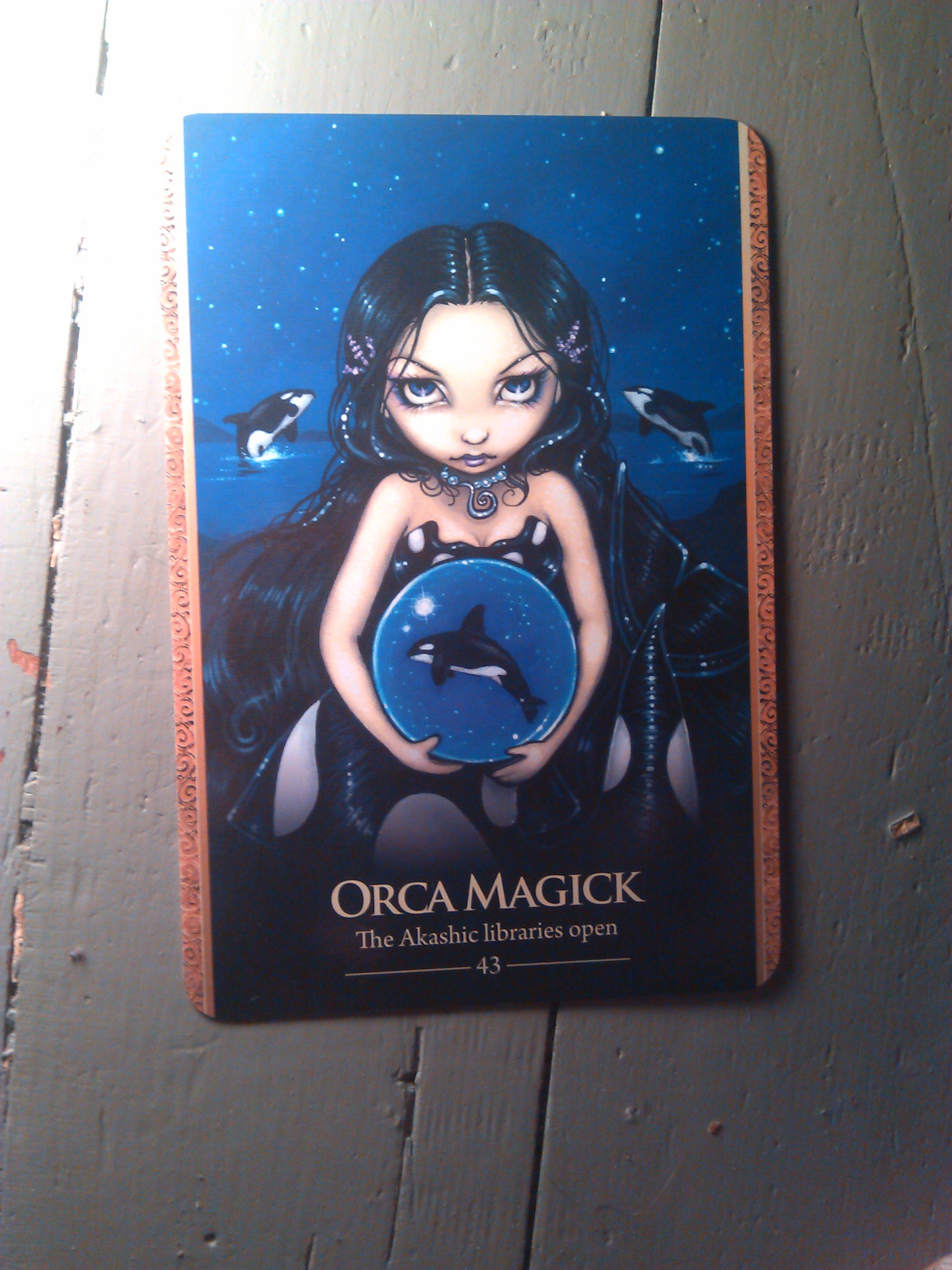Card for Orca Magick with number 43