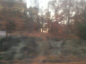 img_0645